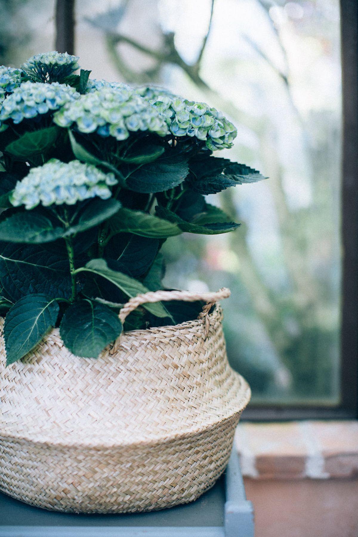 wedding-provence-ingrid-lepan-d-amour-et-de-deco122