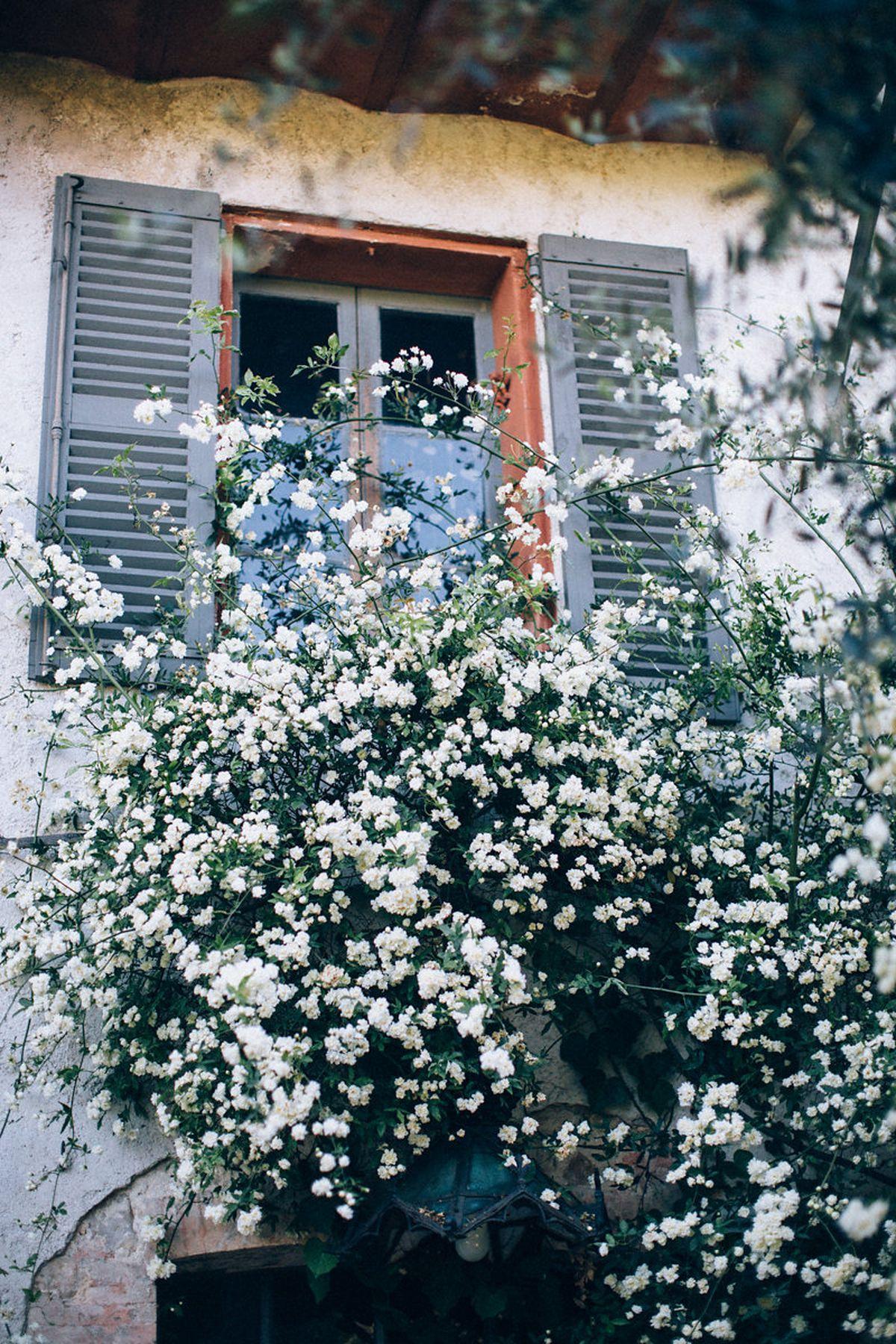 wedding-provence-ingrid-lepan-d-amour-et-de-deco87